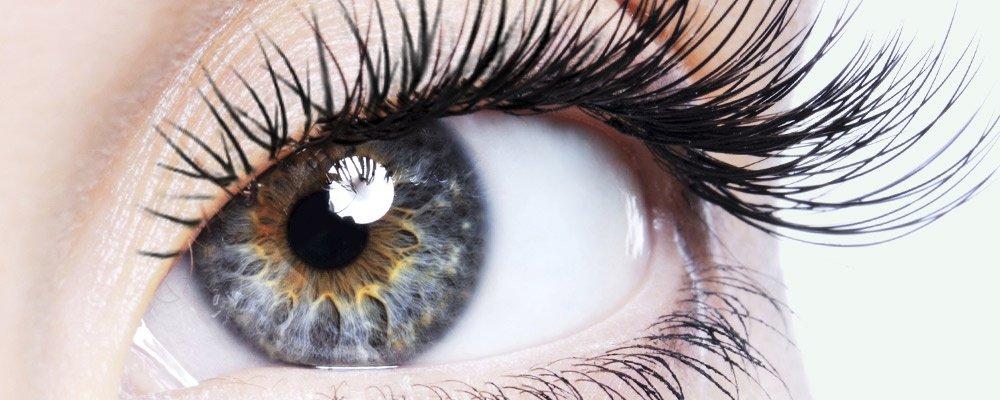 Wimperextensions opvullen na 3 à 4 weken nu € 34,95 bij schoonheidssalon Beauty By Lauren Den Haag